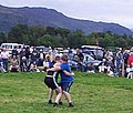 Cumberland wrestling at Keswick Show - geograph.org.uk - 1820.jpg