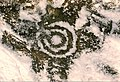 Cup and Ring Markings, Old Bewick Hill Fort - geograph.org.uk - 1497975.jpg