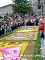 Cusano Mutri (BN), 2007, Infiorata, la processione pomeridiana. - Flickr - Fiore S. Barbato (23).jpg