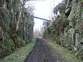 Cutting on Disused Railway Line - geograph.org.uk - 124430.jpg