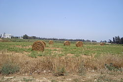 Cyprus countryside near village Pervolia in Larnaca.jpg