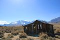 Decay house and Sierra Nevada Mountains - Flickr - daveynin.jpg
