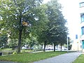 Delft - 2011 - panoramio (321).jpg