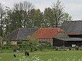 Delft - Schieweg 168 (schuur).jpg