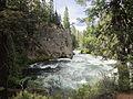Deschutes River Trail to Benham Falls, Oregon (2014) - 24.JPG