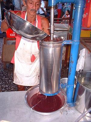Português: Máquina popular de despolpar açaí n...