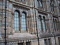 Detail of the outside of the Natural History Museum - geograph.org.uk - 979512.jpg