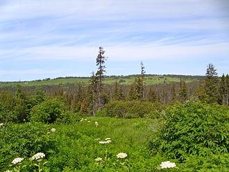 Diamond Ridge, Alaska - Diamond Ridge seen from the Homer city limit on Roger's Loop Road