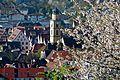 Die Altstadt Bad Mergentheim im Frühling.jpg