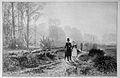 Die Gartenlaube (1886) b 229.jpg