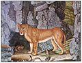 Die Löwin.jpg