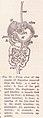 Digestive organs page 83.jpg