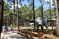 Dino Parque (23).jpg