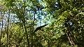 Dinopark, Funtana, Croatia (dinopark.hr) - panoramio (26).jpg