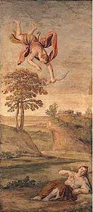 コローニス's relation image