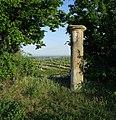 Dorische Säule 19. Jahrhundert vor Oppenheim an der Straße nach Dexheim.jpg
