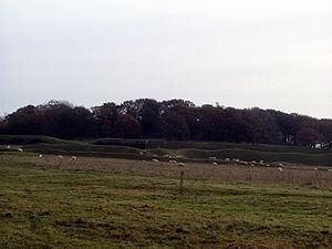 Cranborne Chase - Badbury Rings