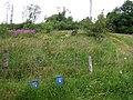 Drumnamarla Townland - geograph.org.uk - 1404814.jpg