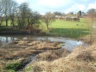 A duck pond in Sutton