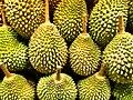 Durian x.jpg