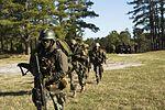 Dutch Troop Attack 160322-M-BZ307-174.jpg