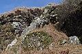 Dyke at An Cumhann - geograph.org.uk - 2359247.jpg