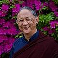 Dzigar Kongtrul Rinpoche.jpg