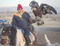 Eagle hunting in Mongolia.png
