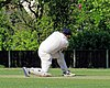 Eastons CC v. Chappel and Wakes Colne CC at Little Easton, Essex, England 04.jpg