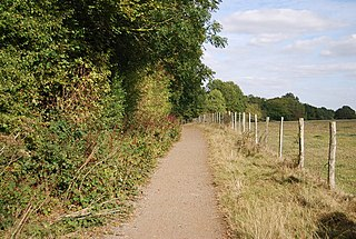 The Tudor Trail