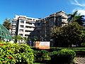 Edificio Altamira arboles.jpg