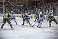 Edmonton Oilers Rookies vs UofA Golden Bears (15088624410).jpg