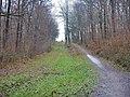 Ehemalige Stadtbahnstrecke im Kräherwald - panoramio.jpg