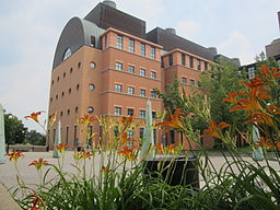 Occupational Therapy Prerequisites >> Physical Therapy Schools - University of Cincinnati