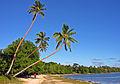 Erakor Beach, Efate, Vanuatu, 2 June 2006 - Flickr - PhillipC.jpg