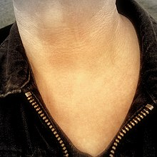 Exposed throat - Flickr - Stiller Beobachter.jpg