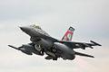 F16 - RIAT 2008 (2754082280).jpg