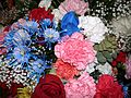 FLOWERS Mixed (2213955920).jpg