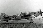 Fairey Firefly FR.4 16-52 RNNAS RWY 02.04.52 edited-3