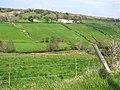 Fallagh Townland - geograph.org.uk - 1262002.jpg