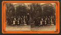 Family reunion?, from Robert N. Dennis collection of stereoscopic views.png