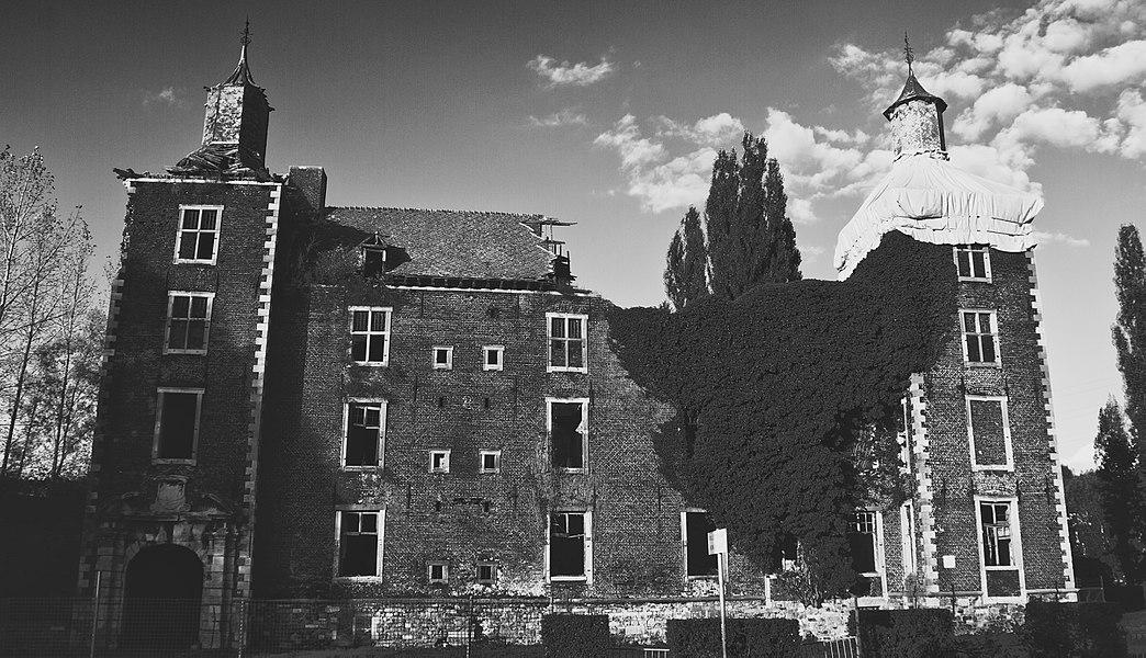 Les vestiges de l'ancien château de Farciennes, comprenant les façades et toitures des deux tours et du bâtiment central qui les réunit (M).
