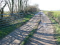 Farm track to Brookway farm near Chalmington - geograph.org.uk - 691745.jpg