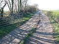 Farm track to Brookway farm near Chalmington - geograph.org.uk - 691745.jpg