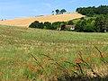Farmland near Streatley and Basildon - geograph.org.uk - 21194.jpg