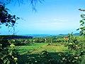 Fehér út Sopron - panoramio.jpg
