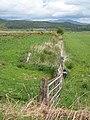 Fence and ditch near Carsenestock - geograph.org.uk - 455184.jpg