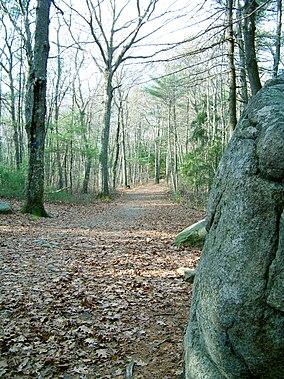 Fgilbert trail.JPG