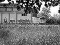 Field 005 - panoramio.jpg