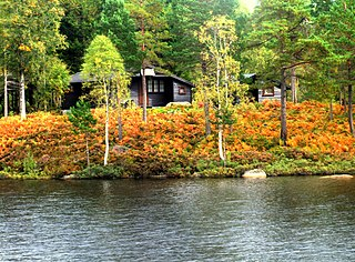Finsland (municipality) Former Municipality in Southern Norway, Norway